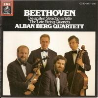 Beethoven_lat_sq